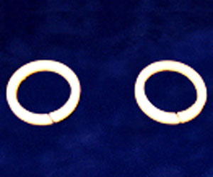 ACP Icon Delrin Split Rings
